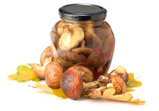 Canned mushrooms in a glass jar Stock Photography