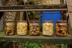 Glass jars with canned mushrooms on a wooden board. Canned mushrooms in a glass sealed container on a wooden board Stock Photo