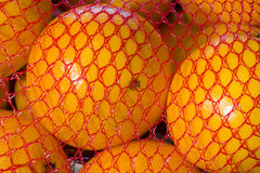 Canned orange Royalty Free Stock Images