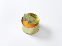 Canned pate Royalty Free Stock Image