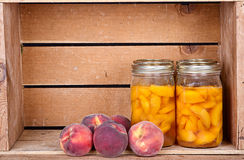 Canned peaches in a rustic crate. Canned homemade peaches in a rustic crate, with fresh elberta peaches Royalty Free Stock Image