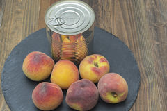 Canned peaches. Tin can with preserved peaches, fresh peaches around the can Stock Images