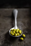 Canned peas Royalty Free Stock Photos
