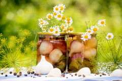 Canned pickled garlic Stock Images