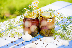Canned pickled garlic Royalty Free Stock Photos