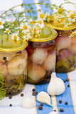 Canned pickled garlic Stock Photos