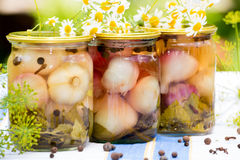 Canned pickled garlic Royalty Free Stock Photo