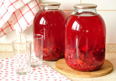 Canned Redcurrant and Orange Compote, selective focus Stock Images