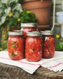Canned salsa. Image of canned / fermented salsa Royalty Free Stock Photo