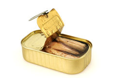 Canned sardines Stock Images
