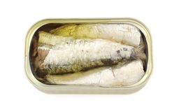 Canned sardines. Preserves of sardine oil in its container Royalty Free Stock Image