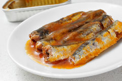 Canned sardines Royalty Free Stock Photography