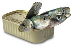 Fish in cans Stock Images