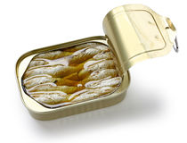 Canned sardines in oil Stock Photography