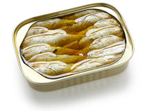 Canned sardines in oil Stock Images