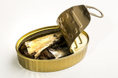 Canned sardines in oil Royalty Free Stock Photography