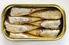 Canned sardines Stock Photos