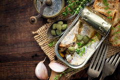 Canned sardines Royalty Free Stock Photos