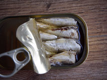 Canned sardines Stock Photography