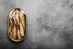 Canned smoked fish. Close up and top view of smoked canned sardine in a tin over gray background, space for text. Tinned fish as a convenient, fast, healthy food royalty free stock photos