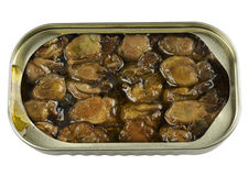 Canned Smoked Oysters Royalty Free Stock Photo