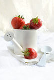 Canned Strawberries Stock Image