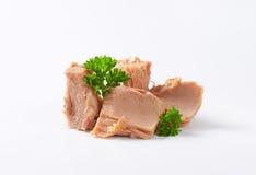 Canned tuna Stock Image