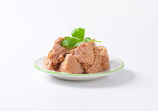 Canned tuna Royalty Free Stock Photos