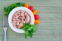Canned tuna fillet in white porcelain bowl, fork, parsley and some cherry tomatoes on a green table mat made of natural plant. Fibers. Seafood, healthy eating royalty free stock photography
