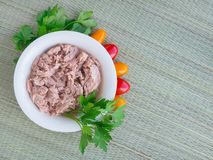 Canned tuna fillet in white porcelain bowl, parsley and some cherry tomatoes on a green table mat made of natural plant fibers. Seafood, healthy eating. Top stock image