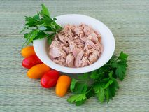 Canned tuna fillet in white porcelain bowl, parsley and some cherry tomatoes on a green table mat made of natural plant fibers. Seafood, healthy eating. Canned royalty free stock images