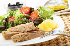 Canned tuna with salad Royalty Free Stock Images