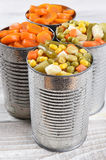 Canned Vegetables Royalty Free Stock Photography