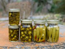 Canned vegetables includes Jalapeno Peppers and okra in glass jars. Closeup canned pickled okra and peppers in glass jars n rustic outdoor table.  Pickled okra Royalty Free Stock Photo