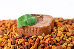 Canned wet pet raw food meat in cute yellow bowl and colorful cat dog food in granules Royalty Free Stock Photos
