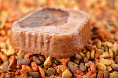 Canned wet pet raw food meat in cute yellow bowl and colorful cat dog food in granules Royalty Free Stock Photography