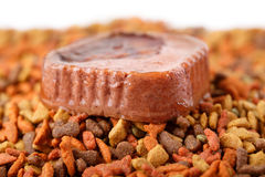 Canned wet pet raw food meat in cute yellow bowl and colorful cat dog food in granules Royalty Free Stock Image