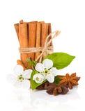 Cannella di bastone, stella dell'anice e fiori della mela Fotografie Stock
