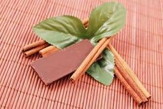 Cannella e cioccolato Immagini Stock