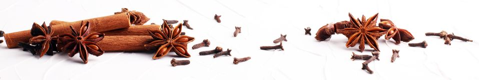 Cannelle, anis étoilé et clous de girofle épices d'hiver sur le fond blanc photos libres de droits