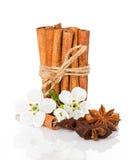 Cannelle de bâton, étoile d'anis et fleurs de pomme Photographie stock libre de droits