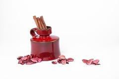 Cannelle et le vase Image stock