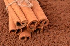 Cannelle sur le fond du cacao Photo libre de droits