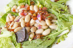 Cannellini Bean Salad Stock Images