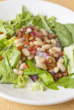 Cannellini Bean Salad Royalty Free Stock Photos
