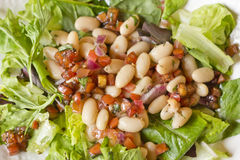 Cannellini Bean Salad Stock Photography