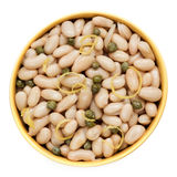 Cannellini Beans with Capers and Lemon Zest Top View Isolated. Stock Image