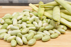 Cannellini beans Royalty Free Stock Photos