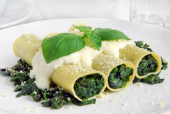 Cannellone vegetariano Fotografia Stock Libera da Diritti