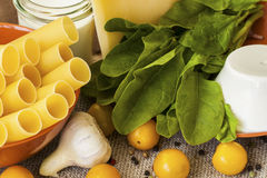 Cannelloni - μαγειρική έννοια μαγειρέματος Στοκ εικόνες με δικαίωμα ελεύθερης χρήσης